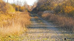 TRAIL WAY — A portion of the proposed Genesee Valley Trail project includes this section of the former railroad  tracks off of Dutcher Rd. between Lennon Rd. and Corunna Rd.Photo by Natalie Blythe