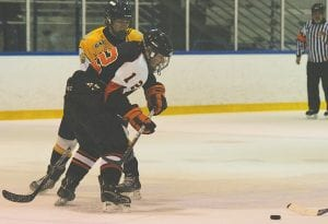 Flushing's Josh Williams battles for a loose puck in a game earlier this season.