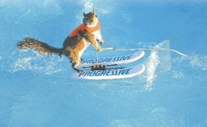 Tippy the water-skiing squirrel made an appearance last year at the fair.