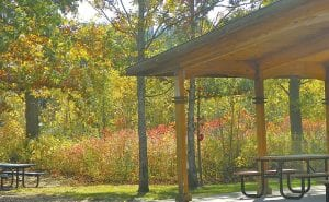 Autumn's full-color show is in full swing for viewing along biking and walking trails in the township park and the new Genesee Valley recreational trail which will close Dec. 1 after its first full season.