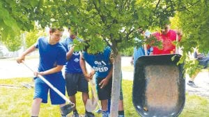 Carman-Ainsworth players Joey Wheeler, Santos Gatica, Derrick Crosby, Tanashio Dones and Kenta Stover work together to mulch around a tree near the school's front entrance.