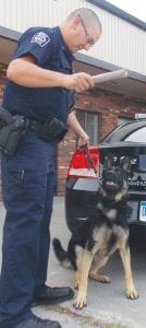 Rosco gets ready to play fetch with Officer Nick Paul.