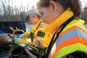 Michigan Department of Natural Resources Wildlife Division workers Karen Cleveland and Amber Carr examine a buck at a deer check station near Big Rapids in Mecosta County.