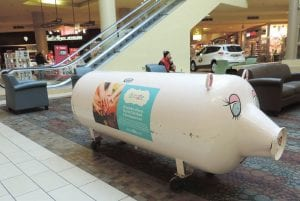 This little piggy bank is standing ready at center court in the Genesee Valley Center shopping mall to collect funds to support the health of children affected by the Flint Water Crisis.