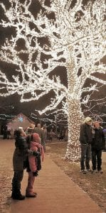 Lights will be displayed throughout the village.