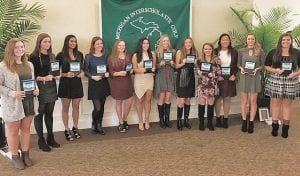 The Div. 1 girls' golf All-State team included locals Cammi Lucia of Grand Blanc, Flushing's Kerri Parks, Lapeer's Baylee Thompson, Davison's Kamryn Johnston and honorable mention Brooke Gibbons of Lapeer.