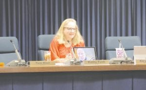 A tablet computer set up in front of Township Clerk Kathy Funk shows Trustee Tom Klee attending the township board meeting via Skype.