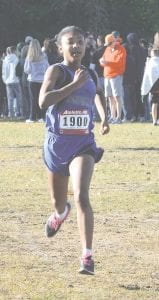 Carman-Ainsworth's Mikaiah Holbrook heads towards the finish line at the Greater Flint Championship on Sept. 30.